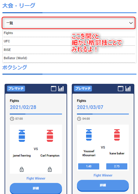 BeeBet_格闘技